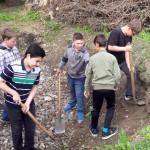 Gartengestaltung in der Schule und im Schulumfeld (2)